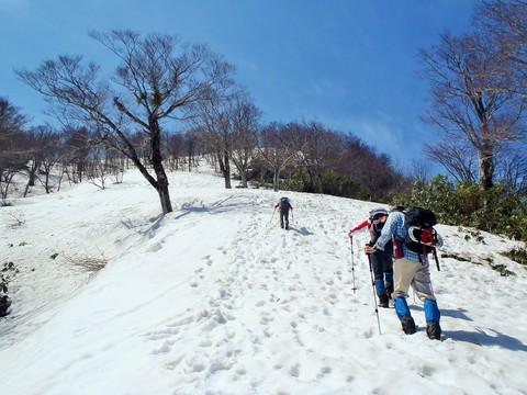 東尾根雪原