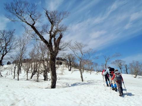 快晴無風雨の雪原