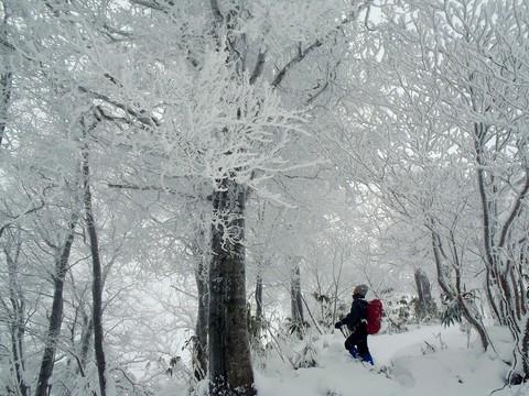 樹氷に見とれるIM君