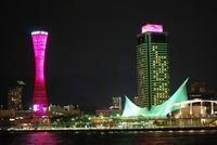 ピンクリボンフェスティバル2009