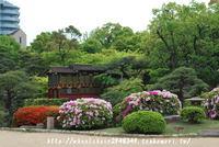 相楽園の日本庭園とつつじ