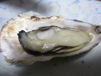 七輪で牡蠣