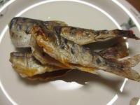 山女魚 塩焼き