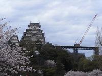 姫路城の改修工事