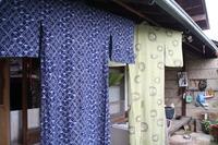 梅雨の晴れ間に~お洗濯と梅の収穫と・・・