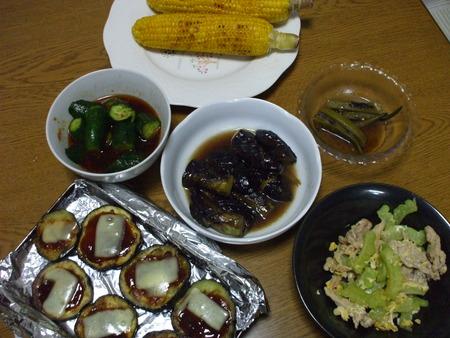 夏野菜づくしの夕食